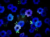 """TIMELESS TREASURE """" ALL OVER FLOWERS"""" Pattern #Cd6842 100% Cotton BTY"""