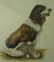 VINTAGE ARTHUR R. EAKIN SPANIEL FLUSHER BIRD HUNTING DOG LISTED ARTIST PAINTING