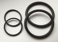 BMW Vanos Solenoid N40 N42 N46 N45 316i 318i 32i O Ring Seals Viton Replacement