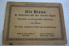"""IN GERMAN -AN OLD BOOK """"DIE BIENE"""" (THE BEES)  BY OTTO Wörner"""