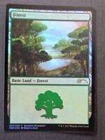 Forest 005/005 Promo Foil - Mtg Magic Cards # 3D45
