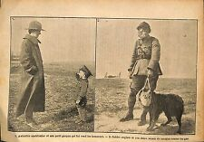 Aviatrice US Air Force/Soldiers British Army Dog Chien  WWI 1917 ILLUSTRATION