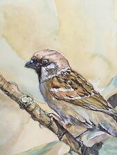Tree Sparrow,On Branch.Original Painting.Bird-Watcher Gift.Delicate Watercolour