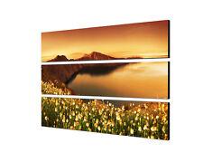 140x90cm Wildblumen Santorini Insel Griechenland Sonne  Druck Leinwand Sinus Art