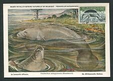 NIGER MK 1963 FAUNA SEEKUH MENATEE LAMANTIN MAXIMUMKARTE MAXIMUM CARD MC d2587