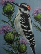 Hairy Woodpecker bird Thistle print of painting