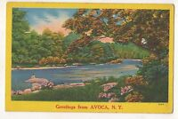 Greetings from AVOCA NY Vintage Steuben County New York Postcard 1