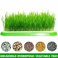 Seed Sprouter Tray Soil-Free Big Capacity Germination Grass Grow Box Plant  BEST