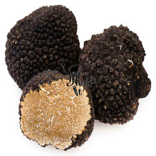 Greek Fresh Whole Black Truffles 50g-300g - Tuber Uncinatum