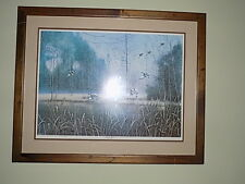 "Jim Booth "" Mallard Haven"" Framed Limited Edition Signed Print 800/900"
