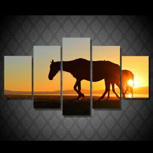 Horse Shadow in Sunset 5 piece HD Poster Art Wall Home Decor Canvas Print