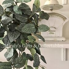 75cm Long Lifelike Artificial Faux Fake Plant Hanging Weeping Fittonia Bush