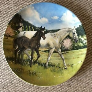 """Spode Collectors Plate """"The Austrian Lipizzaner"""" by Susie Whitcombe 1988"""