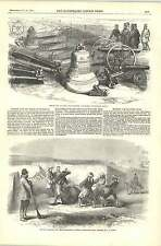 1856 Shoeing Refractory Mule Russian Guns Bells Sebastopol At Woolwich Arsenal