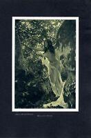 Waldnymphe Weiblicher Akt von 1904 Fotoabbildung von Graf C. de Clugny Nymphe