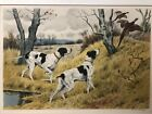 GEORGE FREDERIC ROTIG TWO DOGS & PHEASANTS LITHO PENCIL SIGNED (1873_1961)