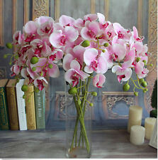 Random Color 1PCS Artificial Butterfly Orchid Silk Flower Wedding Phalaenopsis