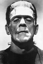Frankenstein (1931) Boris Karloff Face Shot Photo Portrait 24x36 Poster Print