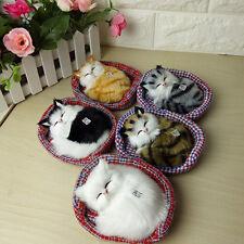 simulación SONIDO dormir Gatos Lindos Peluche Juguete con nido Niño Cumpleaños