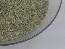 100% biologico 30g Semi Fennel essiccati Loose a base di erbe erba erbe saltadorio