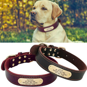 Personalised Leather Dog Collar Large Labrador Big Dogs Pet ID Name Tag Collars