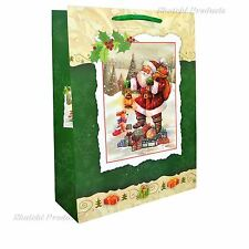 1 x Small Green Luxury Christmas Gift Bag -3D Decorative Glitter Paper Bag