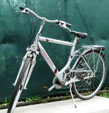 Pegasus Citys Bikes