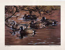 Canada 2012 Duck Stamp Print Mint in Folder w/mint stamp by Patricia Pepin