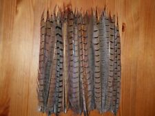"""30 CUT COCK PHEASANT TAIL FEATHERS 9""""FLY TYING ART& CRAFT FLORAL DISPLAY"""