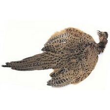 Hen Pheasant Complete Skin for Fly Tying, Loads of useful Mottled feathers