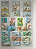 Vögel Vogel Birds Animals Stamps Sellos Briefmarken Timbres Mongolei Asien