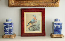 A Victorian c19th Red Velvet Picture Frame with Exotic Bird Print