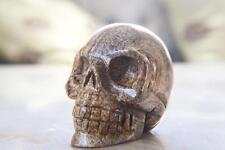 "3"" Natural Picture Jasper Carved Crystal Skull, Realistic,Crystal Healing #Sk212"