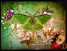 """ENCOURAGEMENT Butterfly """" Vicroy's Ministreak """" Green Flowers - Greeting Card"""