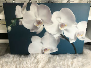 Teal Orchid Wall Art Turquoise & Who 35.5cm X 90Cm