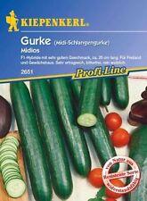 8x Schlangengurke Fitness F1-Gurken Samen Gemüse K443