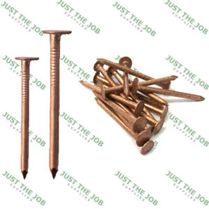 COPPER CLOUT NAILS ~ Roofing Slate, Tree Stump Killers 25,30,35,38,50mm Shingles