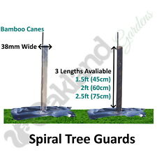 Spiral Tree Guards 38mm Shelters Protectors Rabbit Hedge + Bamboo Canes Saplings
