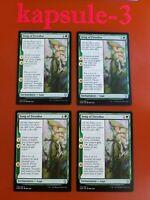 4x Song of Freyalise   Dominaria   MTG Magic Cards