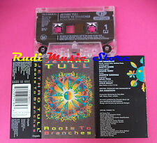 MC JETHRO TULL Roots to branches 1995 uk CHRYSALIS 724383541843 no cd lp dvd vhs