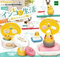 epoch parakeet and life Gashapon 6set mascot capsule toys Figures Complete set