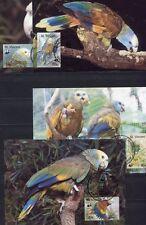 s3738) ST VINCENT 1989 MNH** WWF, birds 4v MAXICARDS