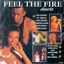 FEEL THE FIRE (DUETS) - VARIOUS ARTISTS / CD - NEU