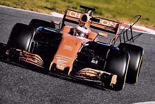 Stoffel Vandoorne SIGNED 12x8  F1 McLaren-Honda MCL32  Barcelona Test 2017