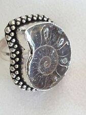 Elegant Ammonite Fossil and Sterling Silver Ring Size 8