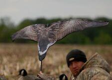 Avery GHG Greenhead Gear SUPER Flag Canada Goose Hunting Duck Decoys Power