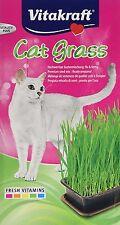 Vitakraft Katze Gras Leckerli Spielzeug 200 g (6 Stück)