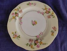 """Baronet Sylvia SALAD PLATE 1 of 2 available have more items to this set 7-1/2"""""""