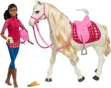 Barbie Dream Horse & Black Hair Doll-Brand New, Fast shipping!