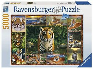 """Ravensburger 5000 puzzle rare """"World Of The Tigers"""" by Chris Hiett Discontinued"""